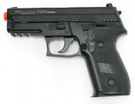 CG28508-L1