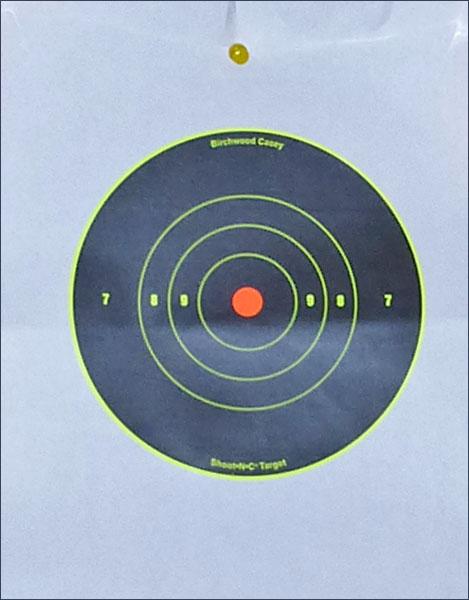 P1010932 Оставь свой след… Мишени Shoot N C Target