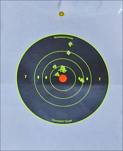 P1010933 Оставь свой след… Мишени Shoot N C Target