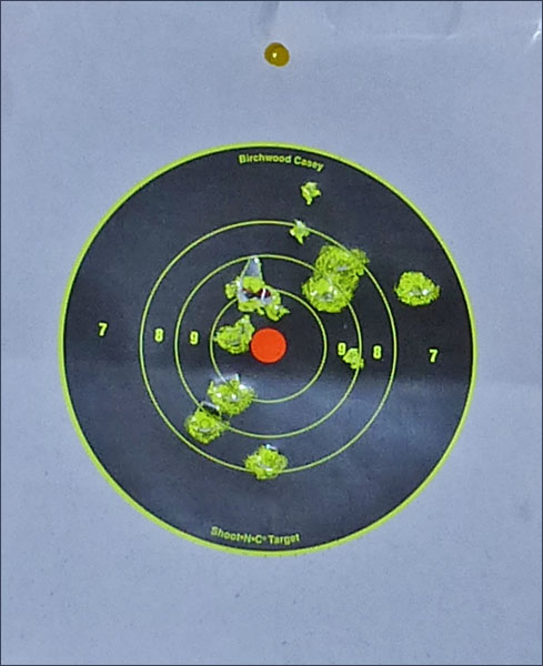 P1010934 Оставь свой след… Мишени Shoot N C Target