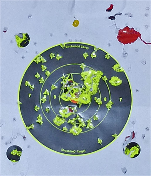 P1010935 Оставь свой след… Мишени Shoot N C Target